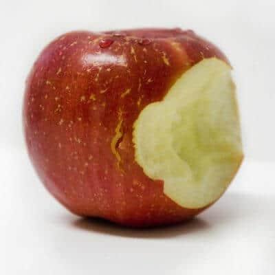 Tip 5: Voeg harder/taaier voedsel toe aan het dieet.