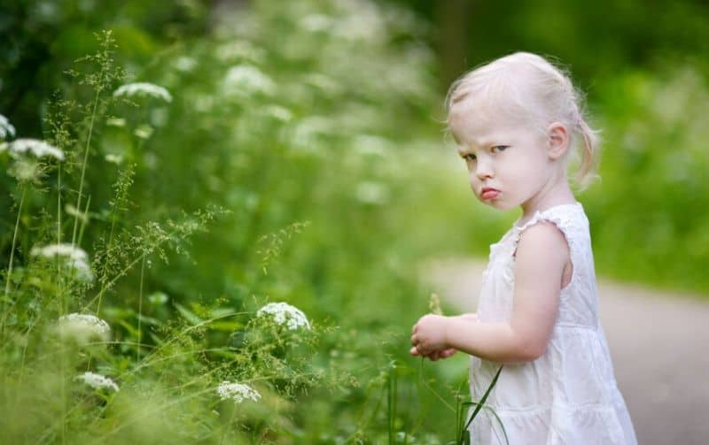 Emoties reguleren; Kinderen en omgaan met emoties + tips